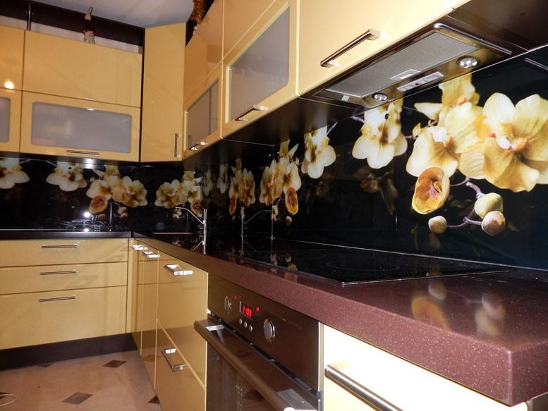 Фартук для кухни из стекла каталог фото  екатеринбург